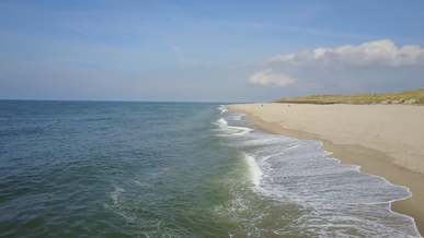 Scenic Video of Beach