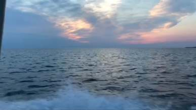 Video Footage From A Boat