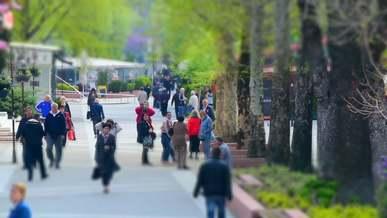 People Walking In The Park In Timelapse Mode