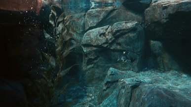 Penguin Underwater