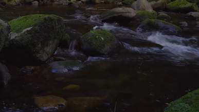 Mossy Rocks On The River