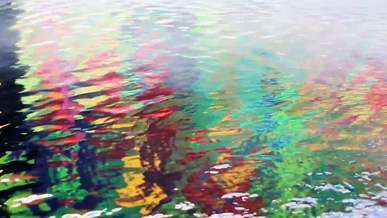 Colorful Reflections in Water