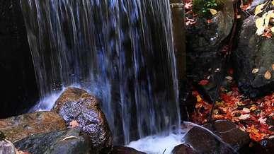 Waterfall Stream Nature