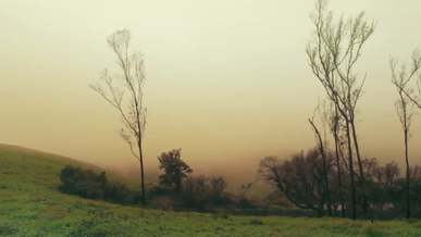 Mystic Landscapes