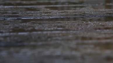 Rainy Weather Raindrops