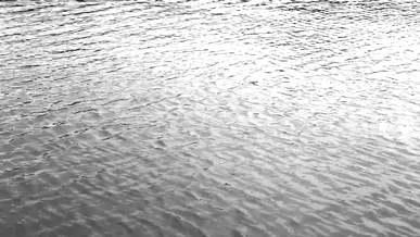 Water Sea Ocean