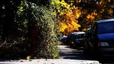 Cars Sidewalk Fall