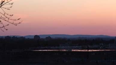 Birds Flying At Evening