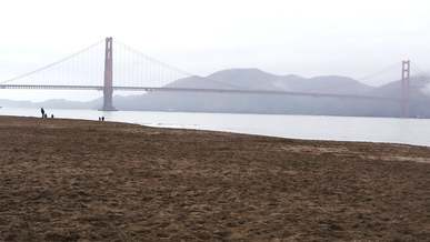 People Near San Francisco Bridge