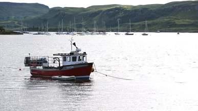 Floating Fisherman's Boat