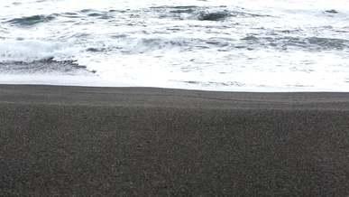 Beach Waves And Sand