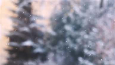 Snow Falling Down